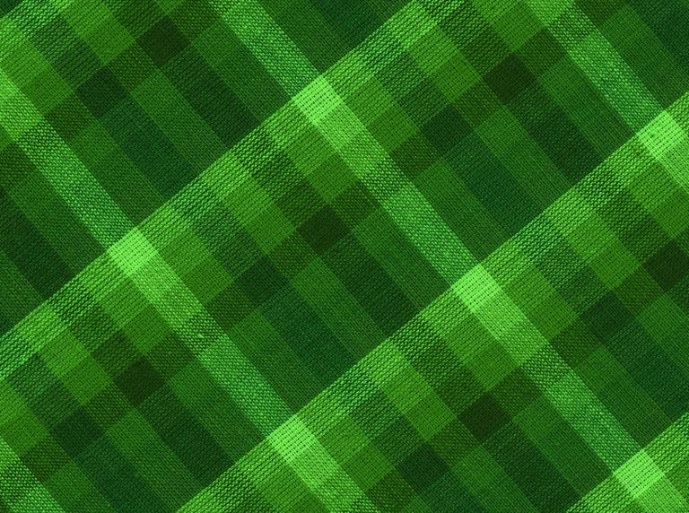 Green check fabric.